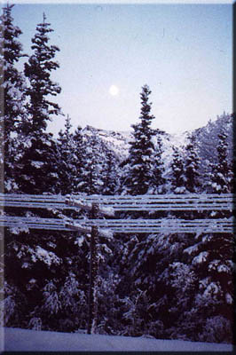 Spirits of the North find poetry in Alaskan winter moon.