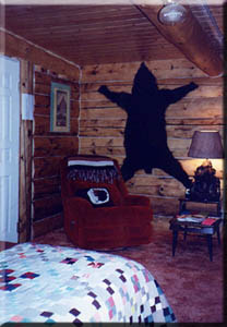 Bear cabin at Tok, Alaska's bed and breakfast.