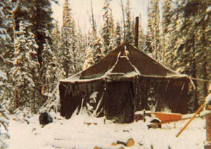 The Tent In Tok, MASH tent, and Alaska winter survival story.