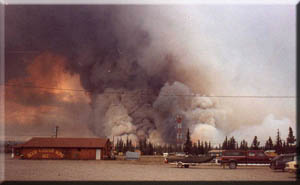 Alaska facts: Forest fire too near Tok, Alaska.